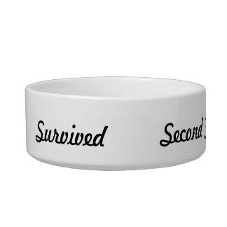 I survived Second Grade! Bowl