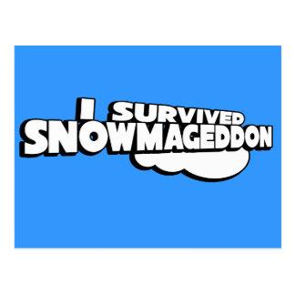 I survived Snowmageddon Postcard