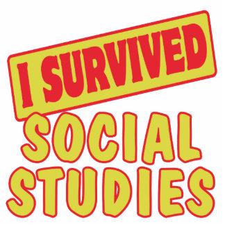 I SURVIVED SOCIAL STUDIES CUT OUTS
