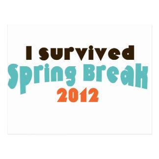 I survived spring break 2012 postcard