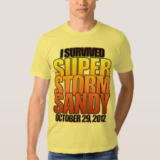 I survived Super Storm Hurricane Sandy T Shirts