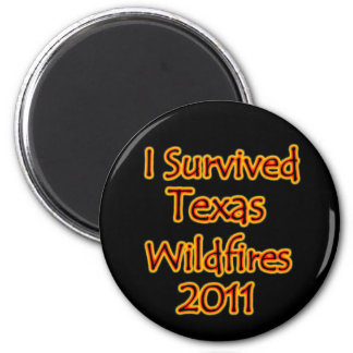 I Survived Texas Wildfires 2011 Fire Magnet