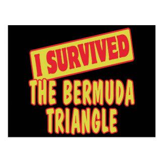 I SURVIVED THE BERMUDA TRIANGLE POSTCARD