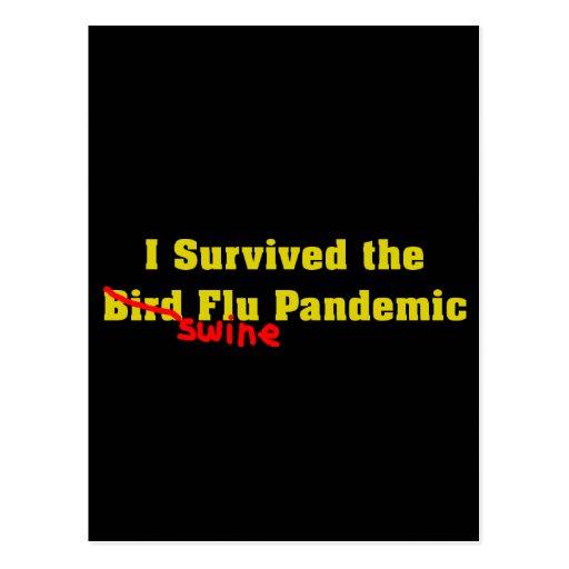 I Survived The Bird er Swine Flu Pandemic Post Cards