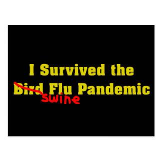 I Survived The Bird er Swine Flu Pandemic Postcard