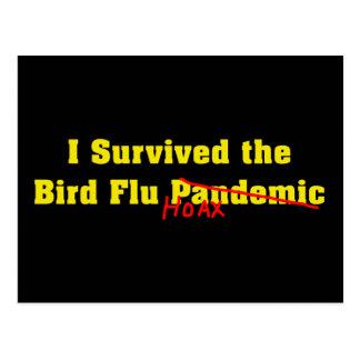 I Survived The Bird Flu Pandemic Hoax Postcard