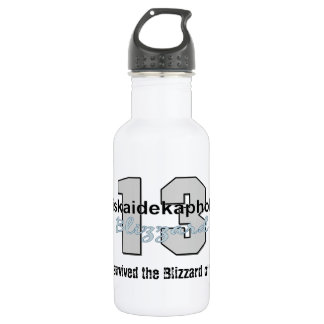 I survived the Blizzard of '13 Stainless Steel Water Bottle