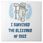 I survived the blizzard of 2012 ceramic tiles