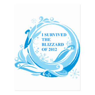 I survived the blizzard of 2012 postcard