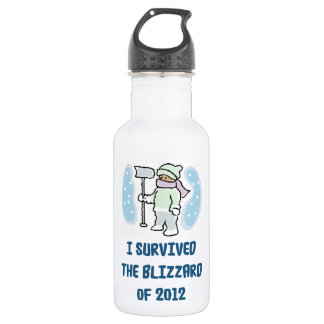 I survived the blizzard of 2012 stainless steel water bottle