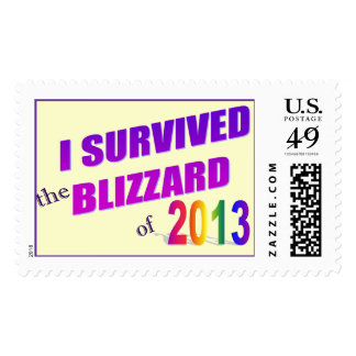 I Survived the Blizzard of 2013 Postage Stamp