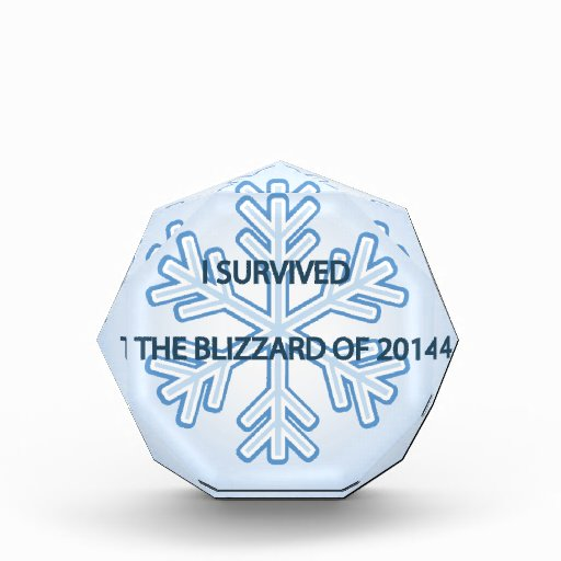 I survived the blizzard of 2014 snowflake acrylic award