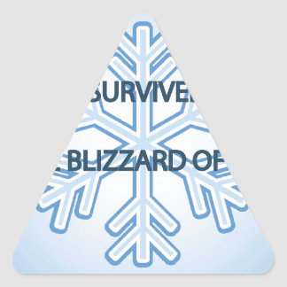 I survived the blizzard of 2014 snowflake triangle sticker