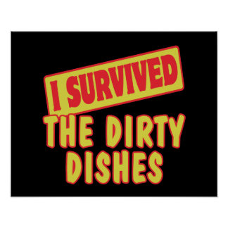 I SURVIVED THE DIRTY DISHES POSTER
