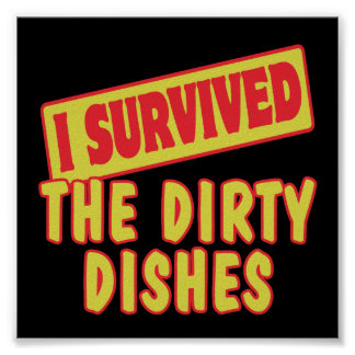 I SURVIVED THE DIRTY DISHES POSTERS