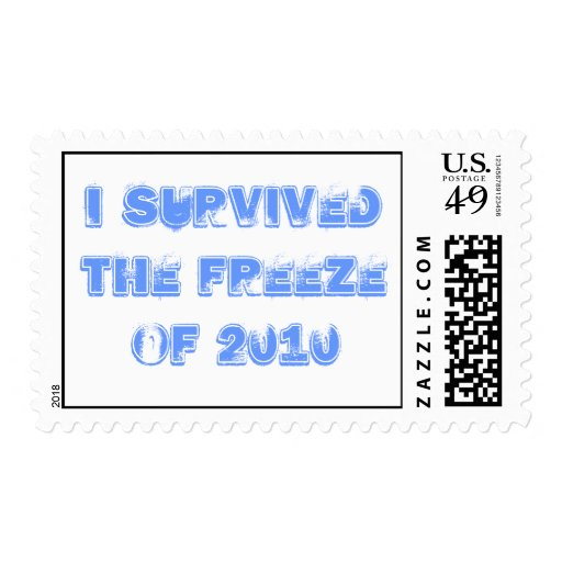 I survived the Freeze of 2010 Postage Stamp