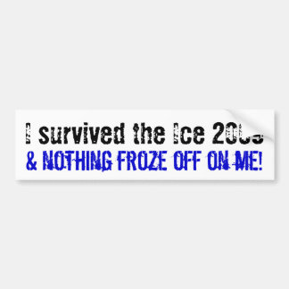 I survived the Ice 2009... Bumper Sticker