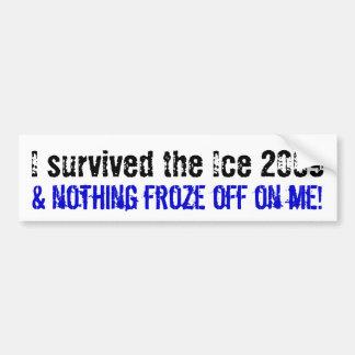 I survived the Ice 2009... Car Bumper Sticker
