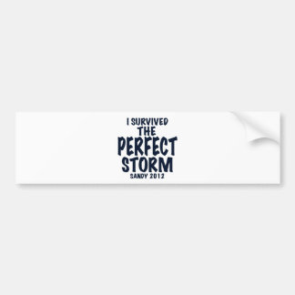 I Survived the Perfect Storm Sandy 2012 hurrican Bumper Sticker