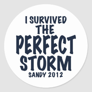 I Survived the Perfect Storm, Sandy 2012, hurrican Classic Round Sticker