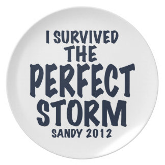 I Survived the Perfect Storm, Sandy 2012, hurrican Plate