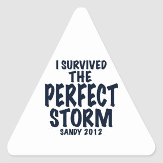 I Survived the Perfect Storm, Sandy 2012, hurrican Triangle Sticker