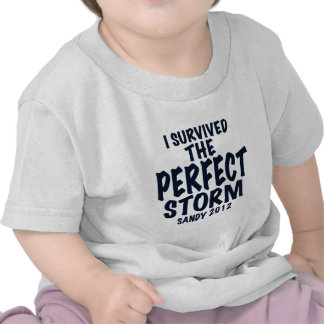 I Survived the Perfect Storm, Sandy 2012, hurrican Tshirts