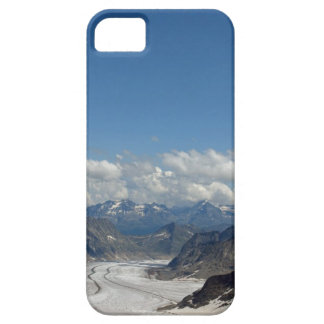 I survived the polar vortex iPhone 5 case
