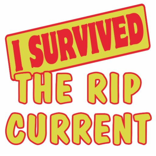 I SURVIVED THE RIP CURRENT PHOTO CUTOUTS