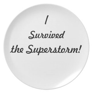 I survived the superstorm! party plates