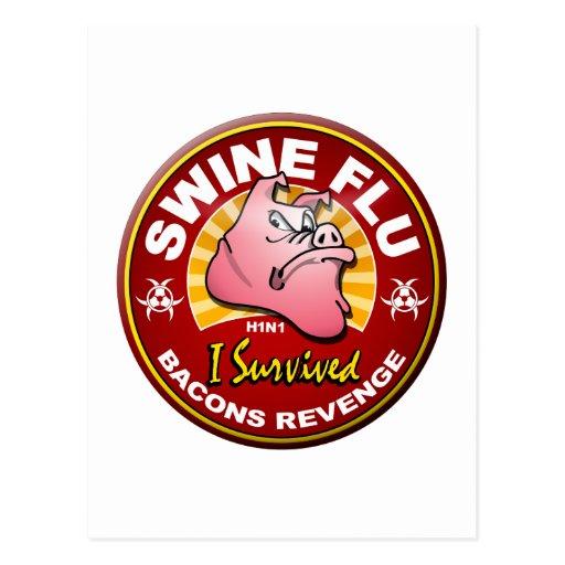 I Survived The Swine Flu - H1N1 Postcard
