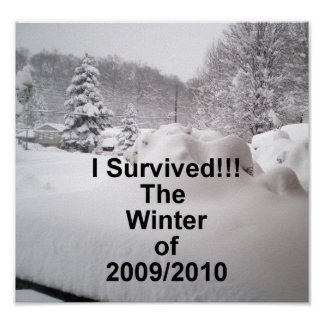 I survived the winter of 2009/2010 poster
