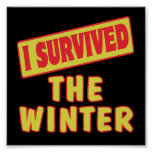 I SURVIVED THE WINTER POSTER