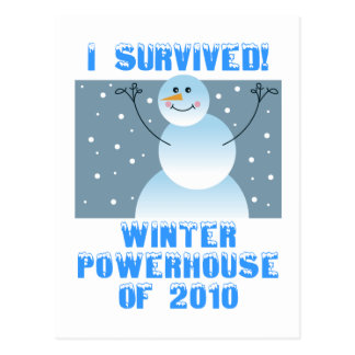 I Survived! Winter Powerhouse of 2010 Postcard