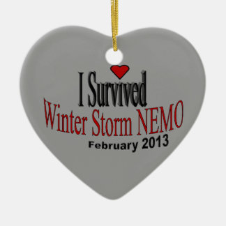 I Survived Winter Storm 2013 Ornament