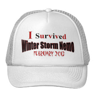 I Survived Winter Storm NEMO 2013 Hat