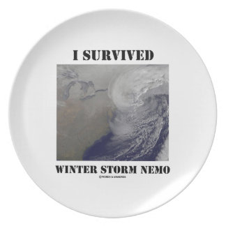 I Survived Winter Storm Nemo (NASA Outer Space) Plate