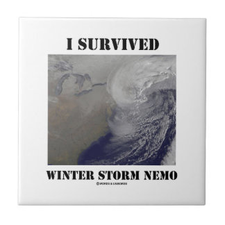 I Survived Winter Storm Nemo (NASA Outer Space) Small Square Tile