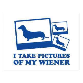 I Take Pictures Of My Wiener Postcard