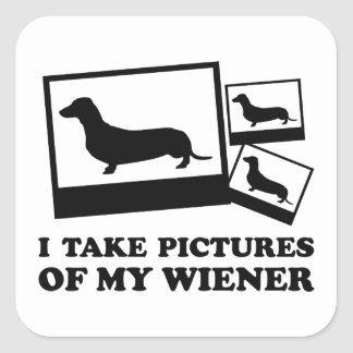 I Take Pictures Of My Wiener Stickers