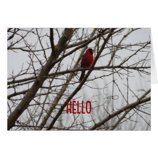 I Think Of You Fondly/Red Cardinal Card