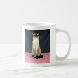 I think, therefore I am Siamese Coffee Mug