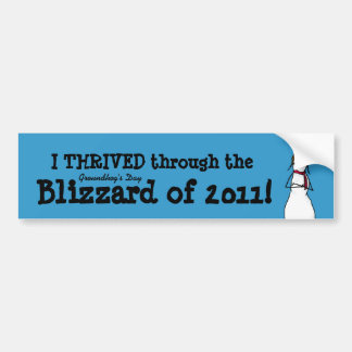I thrived the Groundhog's Day Storm of 2011 Car Bumper Sticker