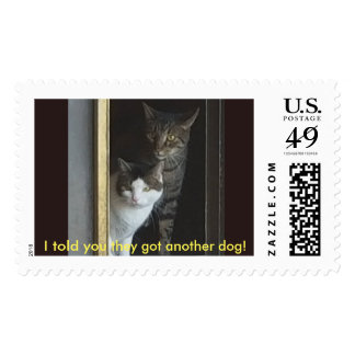 I told you they got another dog! postage