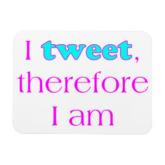 I Tweet Magnet