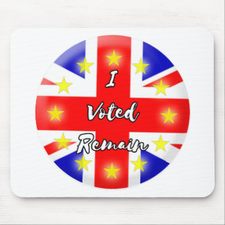 I voted Remain History Mouse Pad