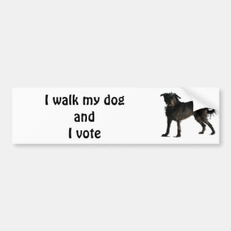 I walk my dog and I vote Car Bumper Sticker