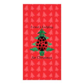 I want a ladybug for christmas red christmas trees card