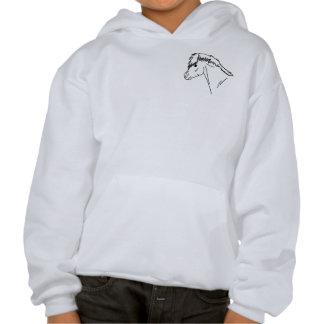 I want a pony! hoodie