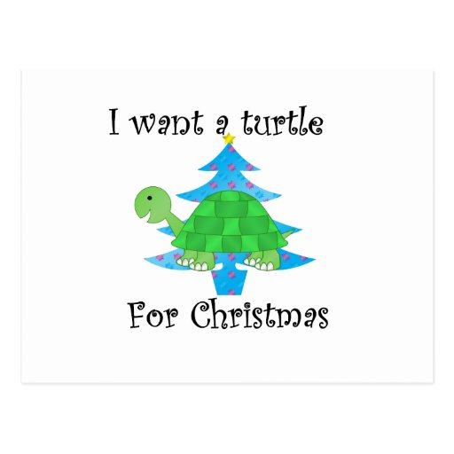 I want a turtle for Christmas Postcard